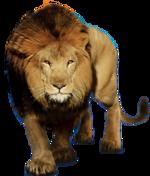 Tabela do Jogo do Bicho - Leão